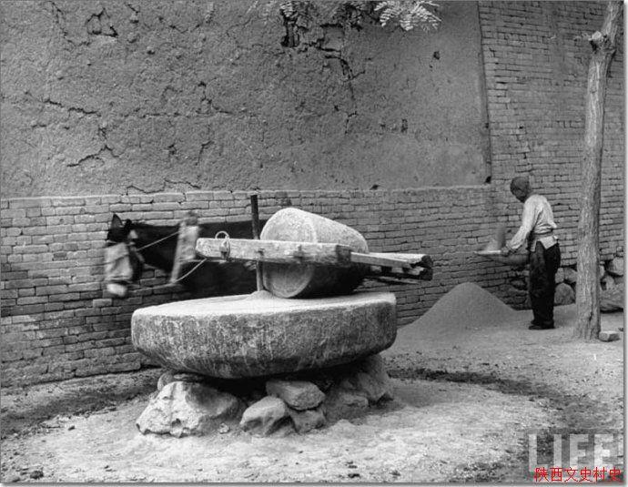 1947年的陕西临潼